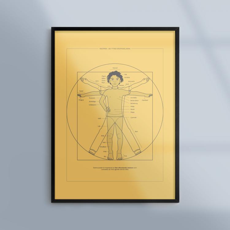 Poster-Tavla-Kroppen-Kroppsdelar-Ram-Kunskapat