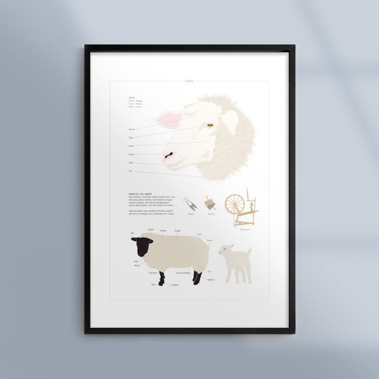 Poster-Tavla-Far-Lamm-Djur-Bondgard-Ram-Kunskapat