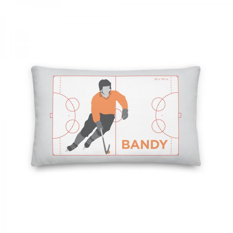 Kudde-idrott-sport-bandy-Kunskapat