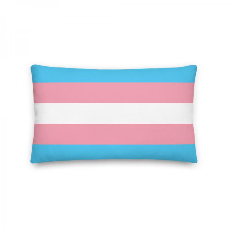 Kudde-pride-trans-framsida-Kunskapat